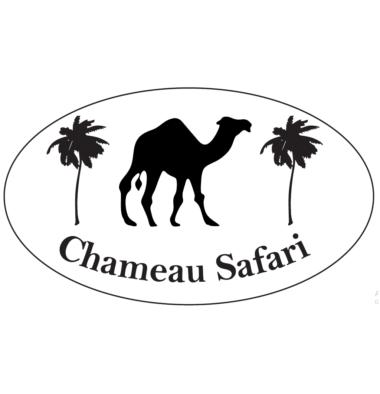 Chameau Safari